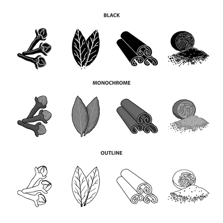 Clove, bay leaf, nutmeg, cinnamon.Herbs and spices set collection icons in black,monochrome,outline style vector symbol stock illustration web.