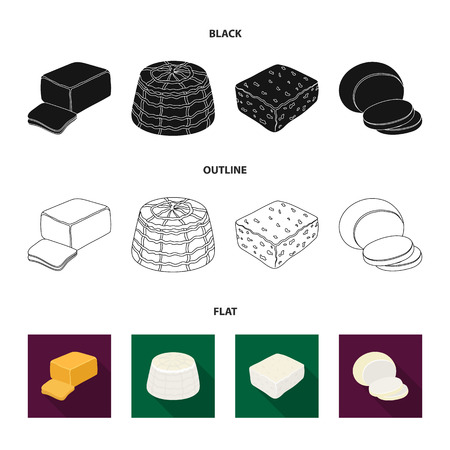 Mozzarella, feta, cheddar, ricotta.Different types of cheese set collection icons in black,flat,outline style bitmap symbol stock illustration web.