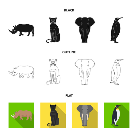 Black rhinoceros, panther wild cat, African animal elephant, imperial penguin. Wild animals set collection icons in black,flat,outline style bitmap symbol stock illustration web.