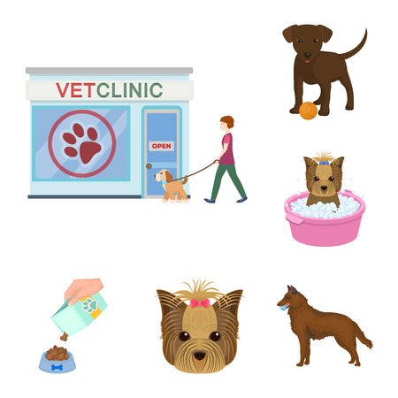Pet cartoon icons in set collection for design. Care and education vector symbol stock web illustration.