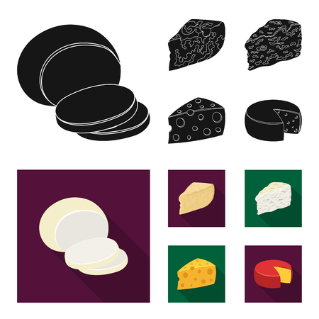 Parmesan, roquefort, maasdam, gauda.Different types of cheese set collection icons in black,flat style vector symbol stock illustration .  イラスト・ベクター素材