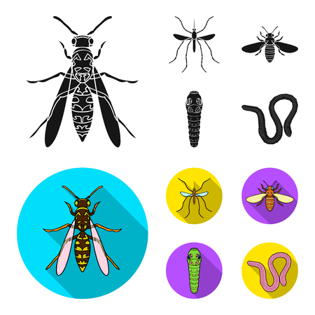 Worm, centipede, wasp, bee, hornet .Insects set collection icons in black,flat style vector symbol stock illustration web.