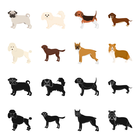 Dog breeds black,cartoon icons in set collection for design.Dog pet bitmap symbol stock web illustration.