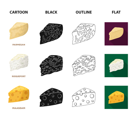 Parmesan, roquefort, maasdam, gauda.Different types of cheese set collection icons in cartoon,black,outline,flat style vector symbol stock illustration web.  イラスト・ベクター素材
