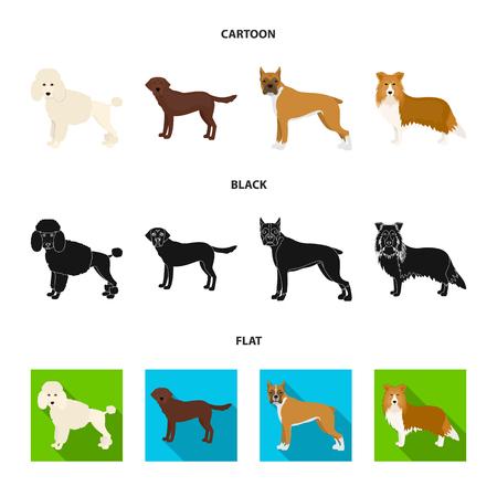 Dog breeds cartoon,black,flat icons in set collection for design.Dog pet vector symbol stock  illustration.