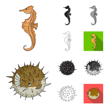 A variety of marine animals cartoon,black,flat,monochrome,outline icons in set collection for design. Fish and shellfish bitmap symbol stock web illustration. Stock Photo