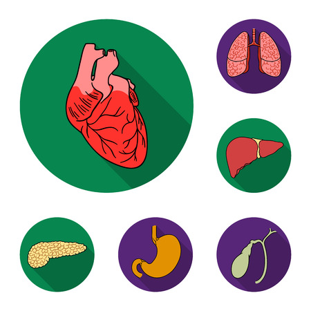 Human organs flat icons in set collection for design. Anatomy and internal organs vector symbol stock web illustration. Stock Illustratie
