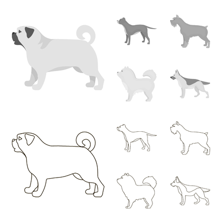 Pit bull, german shepherd, chow chow, schnauzer. Dog breeds set collection icons in outline,monochrome style vector symbol stock illustration web.