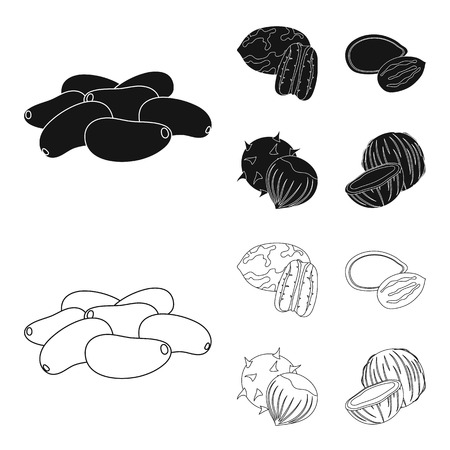 Pecan, pine nut, pumpkin seeds, chestnut.Different kinds of nuts set collection icons in black,outline style bitmap symbol stock illustration web.