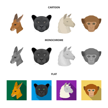 Kangaroos, llama, monkey, panther, Realistic animals set collection icons in cartoon,flat,monochrome style vector symbol stock illustration web. Vectores