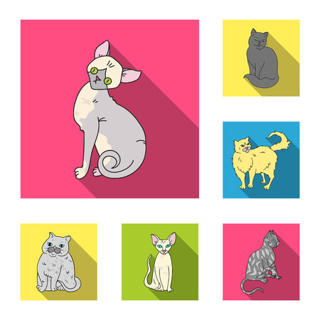 Breeds of cats flat icons in set collection for design. Pet cat bitmap symbol stock web illustration.