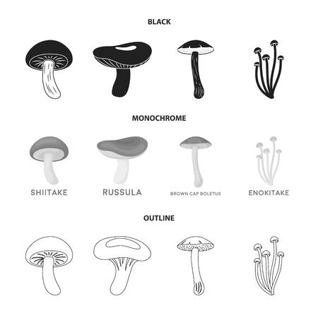 Shiitake, brown cap boletus, enokitake, milk. set collection icons in black,monochrome,outline style bitmap symbol stock illustration web. Stock Photo