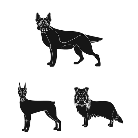 Dog breeds black icons in set collection for design.Dog pet vector symbol stock web illustration.