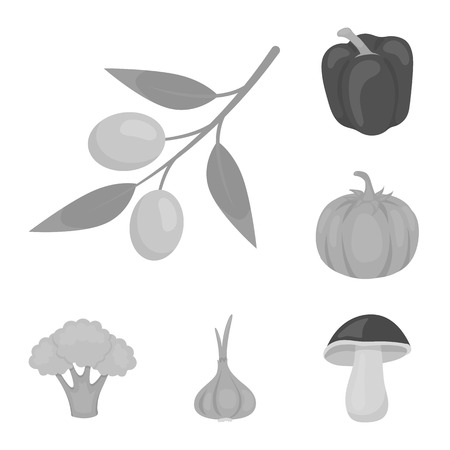 Different kinds of vegetables monochrome icons in set collection for design. Vegetables and vitamins bitmap symbol stock web illustration. Reklamní fotografie