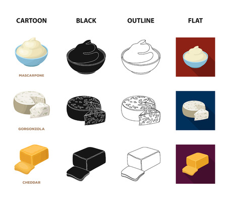 Gruyere, camembert, mascarpone, gorgonzola.Different types of cheese set collection icons in cartoon,black,outline,flat style bitmap symbol stock illustration web.