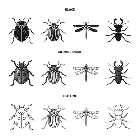 Insect, bug, paw .Insects set collection icons in black,monochrome,outline style vector symbol stock illustration web.
