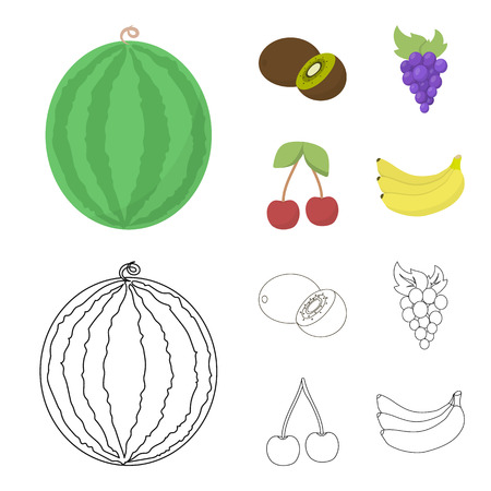 Kiwi, grapes, cherry, banana.Fruits set collection icons in cartoon,outline style vector symbol stock illustration web.