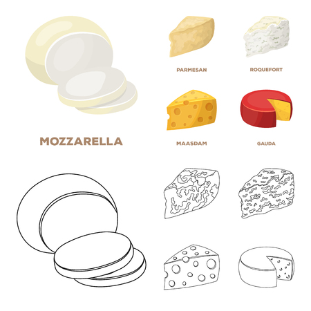 Parmesan, roquefort, maasdam, gauda.Different types of cheese set collection icons in cartoon,outline style vector symbol stock illustration web. Stock fotó - 107298157