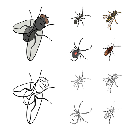 An insect arthropod, an osa, a spider, a cockroach. Insects set collection icons in cartoon,outline style vector symbol stock isometric illustration web.