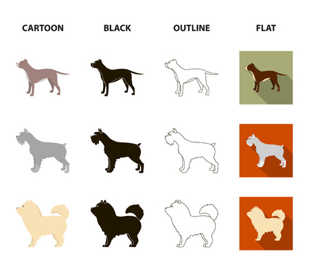 Pit bull, german shepherd, chow chow, schnauzer. Dog breeds set collection icons in cartoon,black,outline,flat style vector symbol stock illustration .