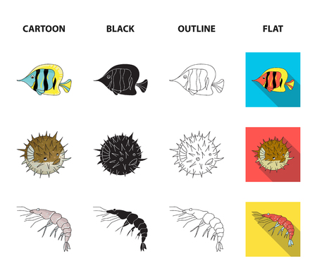 Shrimp, fish, hedgehog and other species.Sea animals set collection icons in cartoon,black,outline,flat style vector symbol stock illustration .