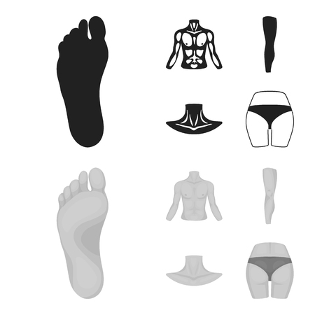 Torso, leg, neck and buttocks. Body parts set collection icons in black,monochrome style vector symbol stock illustration web.