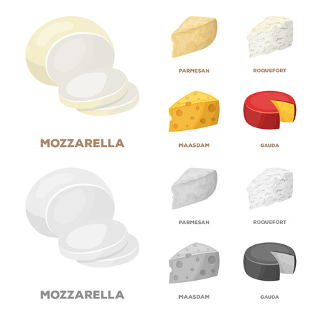 Parmesan, roquefort, maasdam, gauda.Different types of cheese set collection icons in cartoon,monochrome style vector symbol stock illustration web.  イラスト・ベクター素材