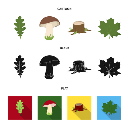 Oak leaf, mushroom, stump, maple leaf.Forest set collection icons in cartoon,black,flat style vector symbol stock illustration web.