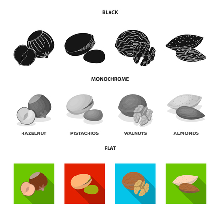 Hazelnut, pistachios, walnut, almonds.Different kinds of nuts set collection icons in black, flat, monochrome style vector symbol stock illustration web.