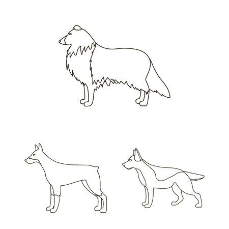 Dog breeds outline icons in set collection for design.Dog pet vector symbol stock web illustration.