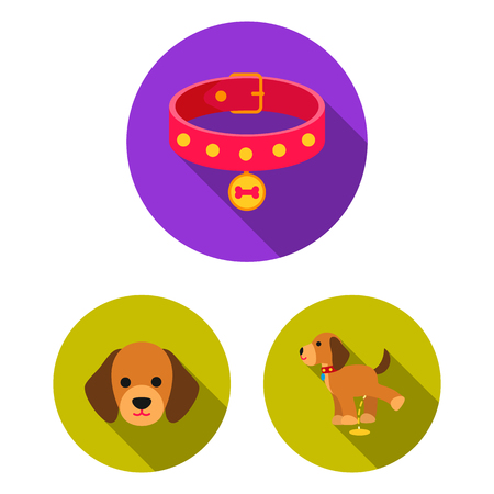 Pet dog flat icons in set collection for design. Caring for the puppy vector symbol stock web illustration.