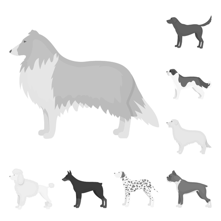 Dog breeds monochrome icons in set collection for design.Dog pet vector symbol stock  illustration. 写真素材 - 108332100