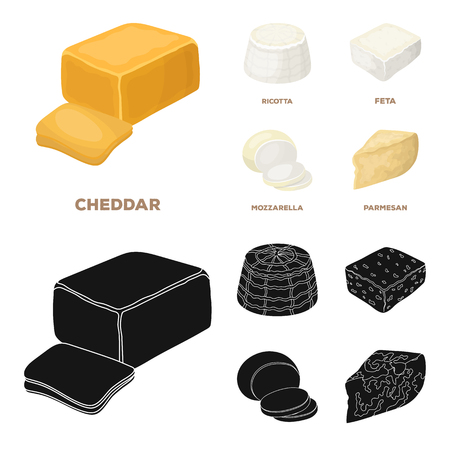 Mozzarella, feta, cheddar, ricotta.Different types of cheese set collection icons in cartoon,black style bitmap symbol stock illustration .