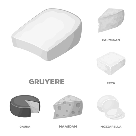 Different kind of cheese monochrome icons in set collection for design.Milk product cheese bitmap symbol stock web illustration.