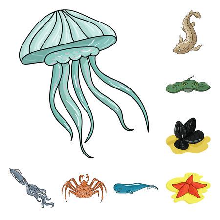 Une variété d'icônes de dessin animé d'animaux marins dans la collection de jeux pour la conception. Illustration de stock de symbole de vecteur de poisson et de crustacés.