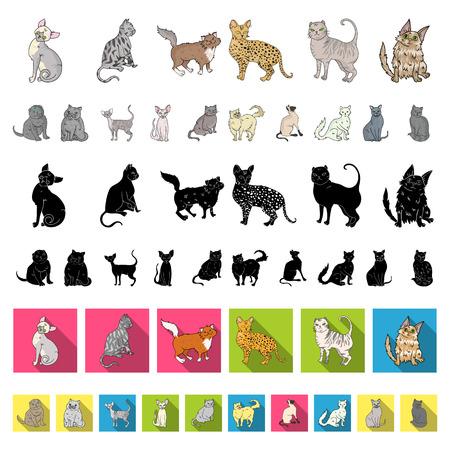 Rassen von Katzenkarikaturikonen in der Satzsammlung für Design. Haustierkatzevektorsymbolvorratillustration.