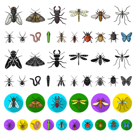 Different kinds of insects cartoon icons in set collection for design. Insect arthropod vector symbol stock  illustration. Stock Illustratie