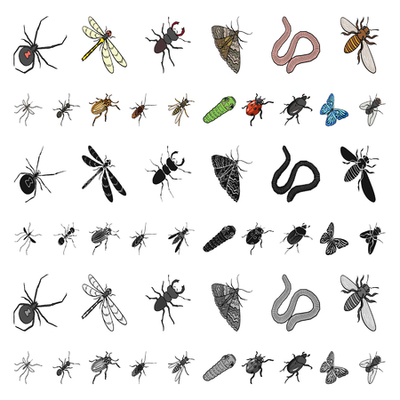 Different kinds of insects cartoon icons in set collection for design. Insect arthropod vector isometric symbol stock illustration.
