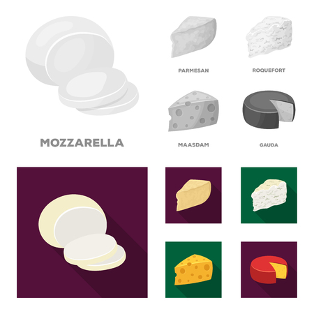 Parmesan, roquefort, maasdam, gauda.Different types of cheese set collection icons in monochrome,flat style bitmap symbol stock illustration web.