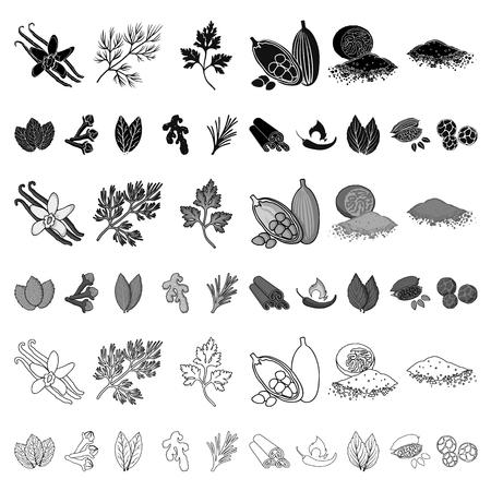 Kräuter- und Gewürzkarikaturikonen in der Satzsammlung für Design. Verschiedene Arten von Gewürzen Vektorsymbol stock web Illustration. Vektorgrafik