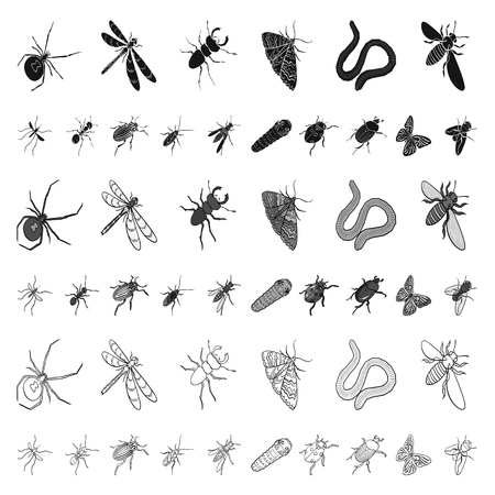 Different kinds of insects cartoon icons in set collection for design. Insect arthropod vector isometric symbol stock web illustration.