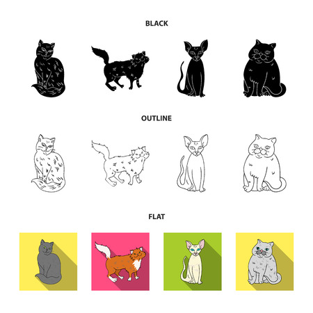 Sphinx, nibelung, norwegian forest cat and other species. Cat breeds set collection icons in black,flat,outline style bitmap symbol stock illustration . Stock Photo