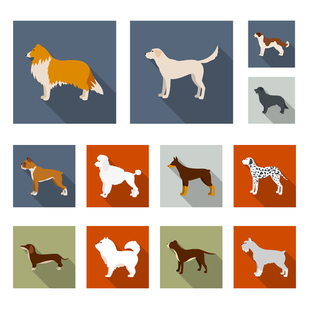 Dog breeds flat icons in set collection for design.Dog pet bitmap symbol stock  illustration.
