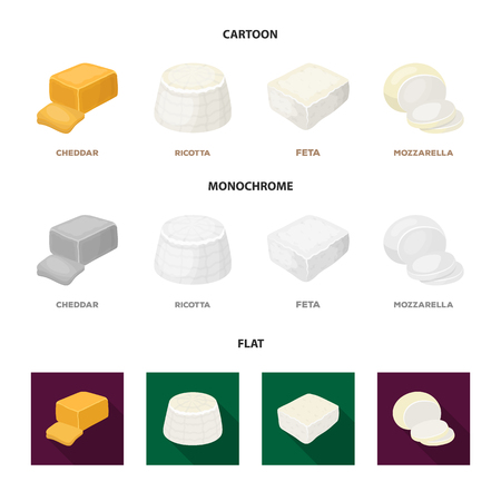 Mozzarella, feta, cheddar, ricotta.Different types of cheese set collection icons in cartoon,flat,monochrome style bitmap symbol stock illustration web.