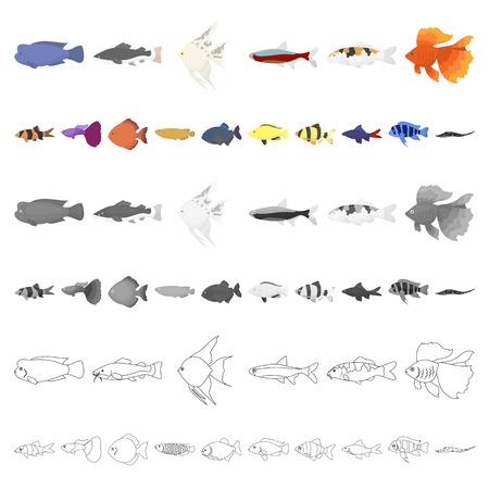 Different types of fish cartoon icons in set collection for design. Marine and aquarium fish vector symbol stock illustration. Ilustração