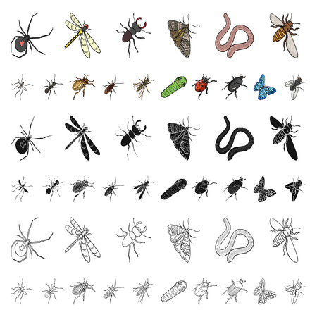 Different kinds of insects cartoon icons in set collection for design. Insect arthropod vector isometric symbol stock  illustration. Illustration
