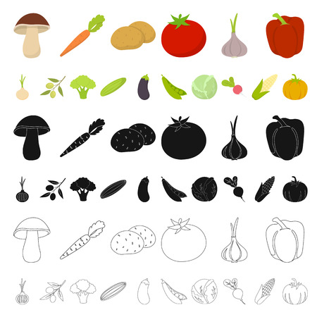Different kinds of vegetables cartoon icons in set collection for design. Vegetables and vitamins vector symbol stock web illustration.