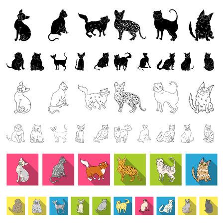 Razas de gatos planos iconos de colección set de diseño. Ilustración de stock de símbolo de vector de gato mascota.