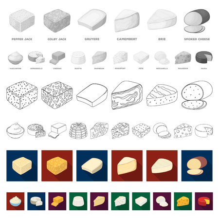 Different kind of cheese flat icons in set collection for design.Milk product cheese vector symbol stock  illustration.