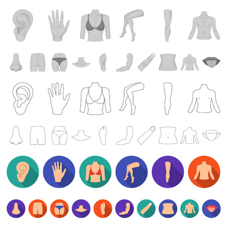 Part of the body, limb flat icons in set collection for design. Human anatomy vector symbol stock  illustration. Illustration